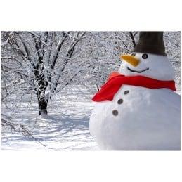 Kit bonhomme de neige