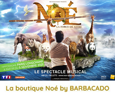 Noé le spectacle musical